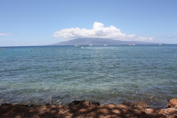 Hawaii Day 3 (14)