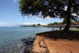 Hawaii Day 3 (16)