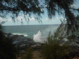 Hawaii Day 7 (162)