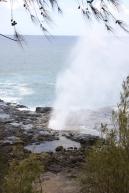 Hawaii Day 7 (78)
