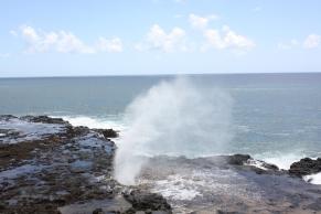 Hawaii Day 7 (99)