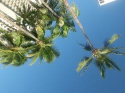 hawaii-day-10-184